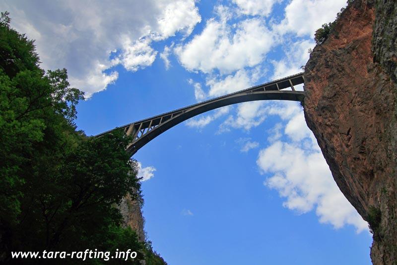 Bridge On Tara River